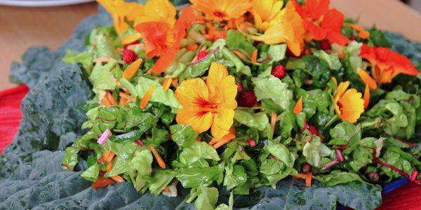 Salade van warmoes en eetbare bloemen