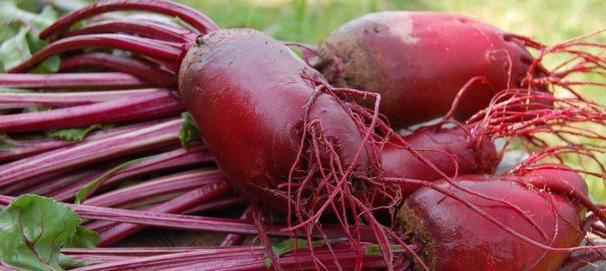 Heldere rode biet-appel-wortelsoep