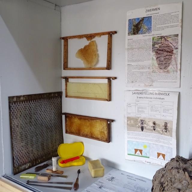 vitrine in de bijenhal